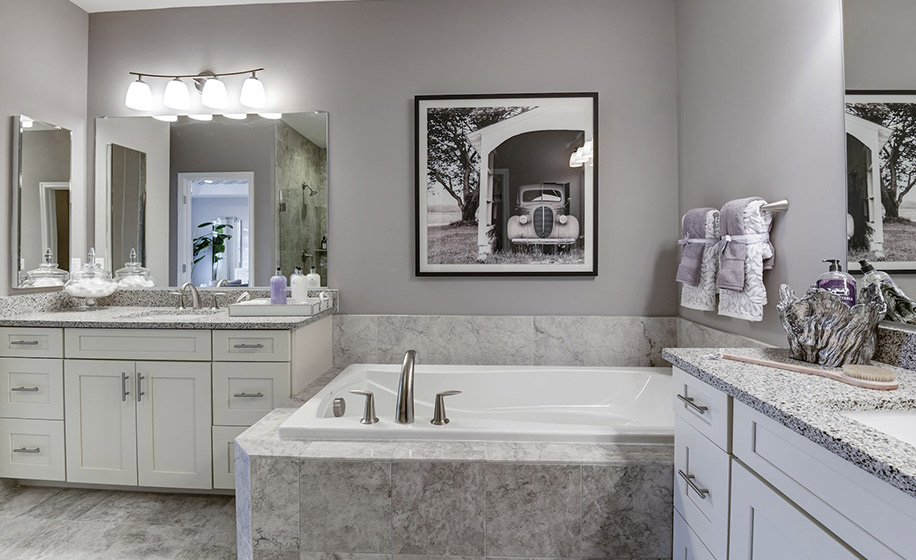 Birchwood at Brambleton Hudson Master Bathroom